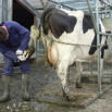 Foot Diseases Farming Note