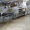 Segregation Gates Farming Note
