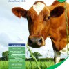 Dairy Costings Focus Report 2015