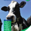 Dairy Costings Focus Report 2014