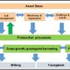 Dairy Lean Management