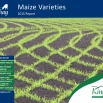 Kingshay's Maize Variety Report 2015