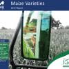 The 2017 Maize Varieties Report