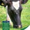 The Forage Costings Report 2015
