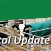 Technical Update 2015