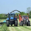 High nitrates in silage grass possible