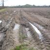 Grassland Soil Compaction Farming Note