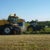 Improving Silage Quality Farming Note