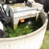 Water Quality Farming Note