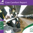 Cow Comfort Report