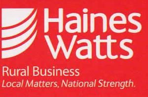 Haines Watts logo