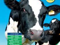 Kingshay-Dairy-Costings-Focus-Report-2012