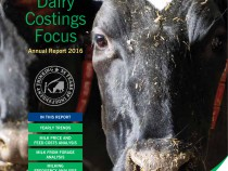 Kingshay Dairy Costings Focus cover