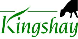 Kingshay GREEN CLEAR SM-01