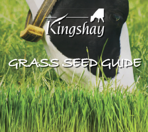 Kingshay Grass Seed Guide