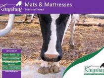 Mats & Mattresses Report