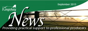 Newsletter Sep13 Header