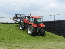 Effective Grass Silage Fermentation
