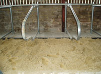Sand Cubicles - The Gold Standard?