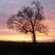 Sunset tor (2)