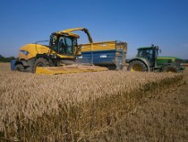 harvesting wholecrop cereals